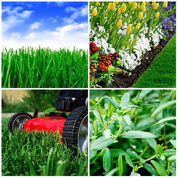 Lawn service quotes quotesgram for Lawn and garden services