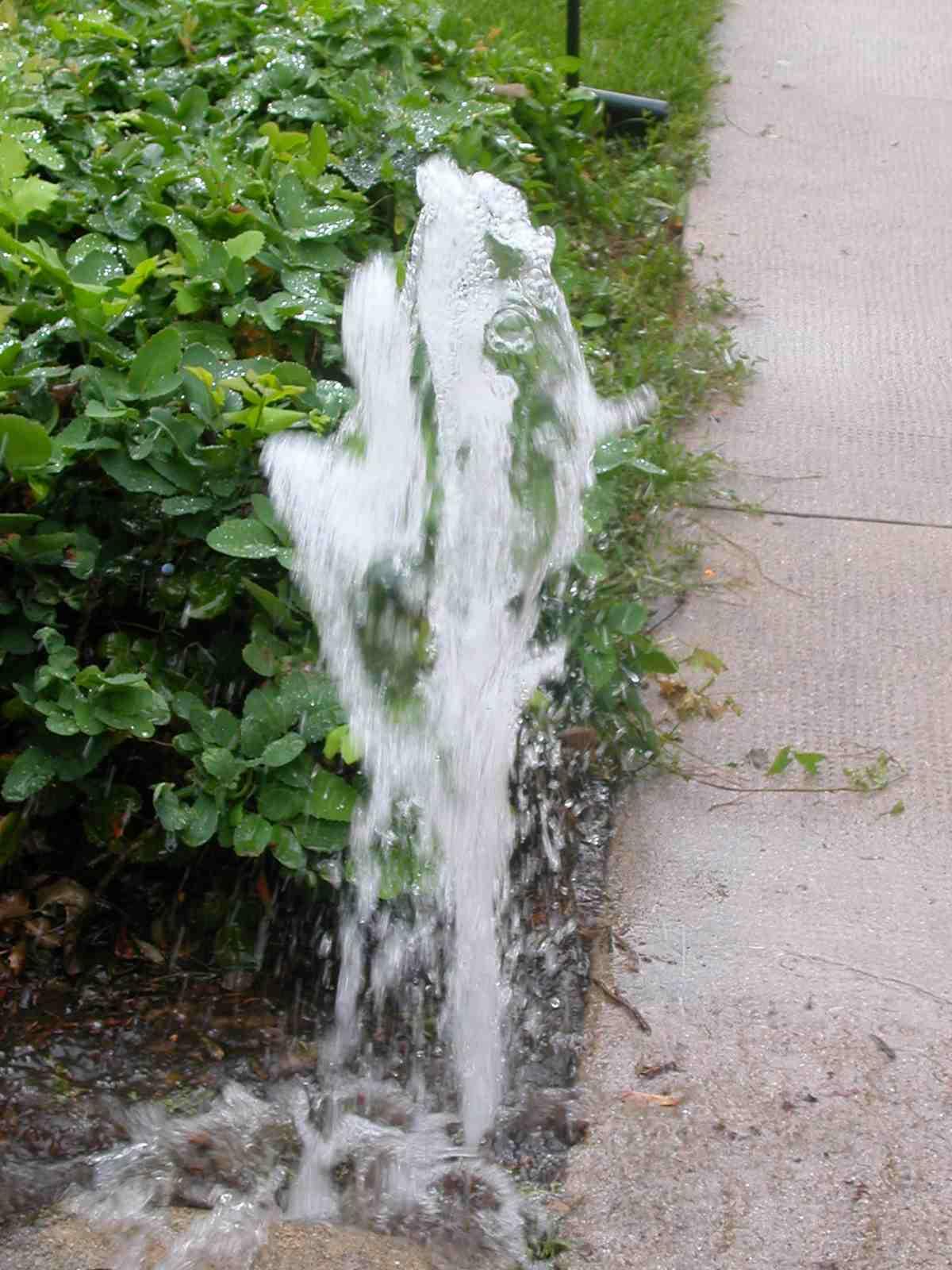 Sprinkler Repair - Folsom Lawn Service